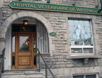 Hôpital Vétérinaire Westmount