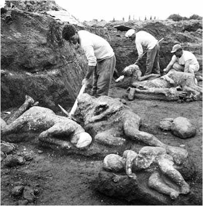 photo: Archaeologists unearth plaster casts of victims found in the Garden of the Fugitives, Pompeii. Photo © Bettmann / CORBIS