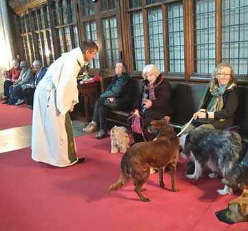 animals welcome westmount park church