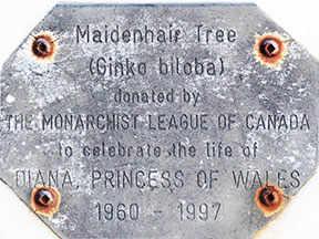 diana plaque memorial westmountmag.ca