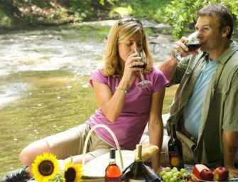 Bienvenue aux vins <br>de soif