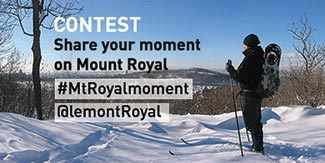 mount royal park contest westmountmag.ca