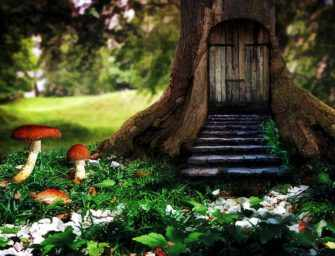 Secret Places <br>Hidden Treasures / 1