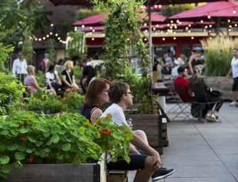 Un jardin oasis <br>au cœur de Montréal