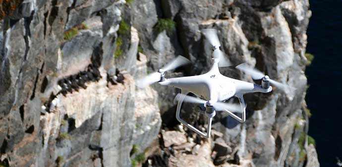 drone cliff birds - WestmountMag.ca