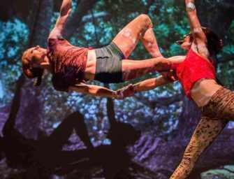 The Goblin Market: <br>circus, theatre and dance