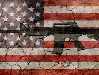 "The Hammer comes down: <br> ""We need more guns not less!"""