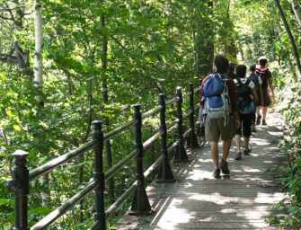 May, Mount Royal month: <br>Explore the mountain!