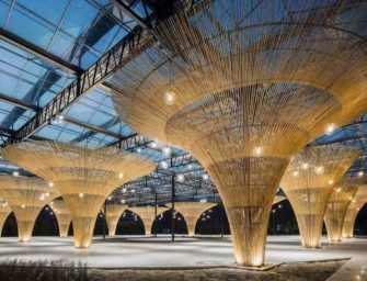 Lauréats 2018 des prix <br>Architecture MasterPrize