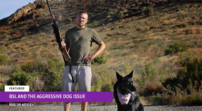 BSL and the aggressive dog issue - WestmountMag.ca