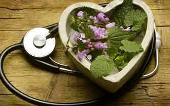 heart healthy herbs - Westmountmag.ca