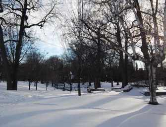 Westmount Here & There <br>February 21, 2019