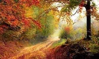 autumn reflections - WestmountMag.ca