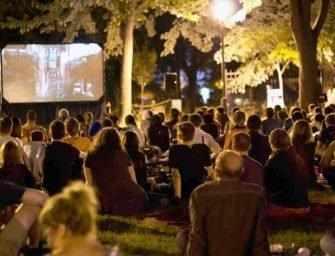 La 10e édition du Cinéma <br>sous les étoiles se poursuit