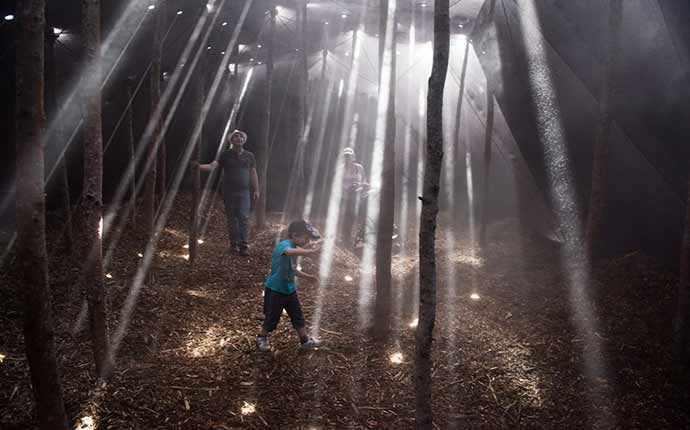 Forêt, Mathilde Leveau & Ronan Virondaud – photo : Martin Bond – WestmountMag.ca