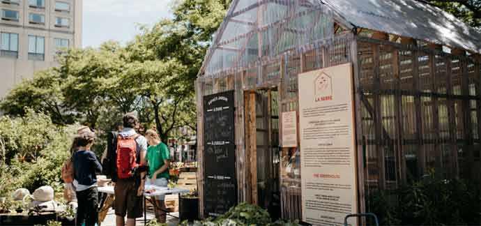 Jardins Gamelin - Agriculture urbaine – WestmountMag.ca