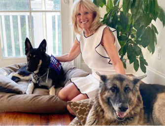 All The Presidents' Dogs: <br>From Washington's to Biden's