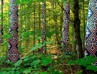 Voix autochtones d'aujourd'hui <br>Savoir, trauma, résilience