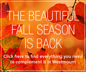 The Beautiful Fall Season is Back – WestmountMag.ca