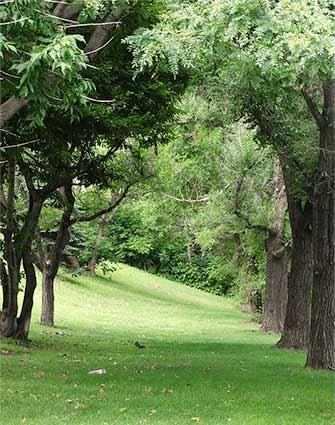 Selby Park - WestmountMag.ca