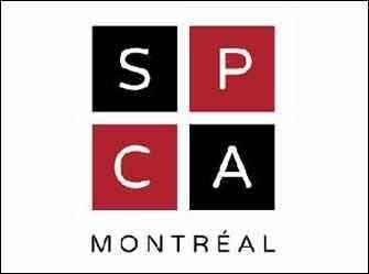 SPCA logo - WestmountMag.ca