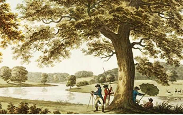 Welbeck Estate illustration